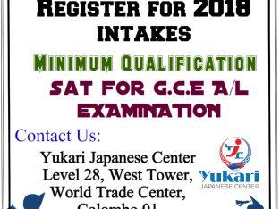 Learn & Earn in Japan