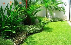 Nazar Landscaping