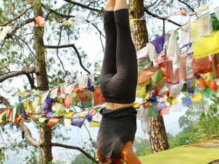 Join certified 200- Hour Yoga Teacher Training Course in Rishikesh, India