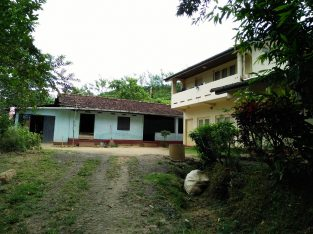 Tea estate with Bungalow in Morawaka for sale (13.4 acres)