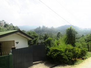 Brand New Luxury house for sale in Bandarawela