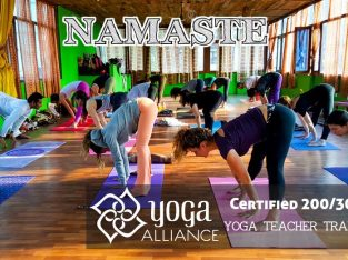 Yoga Teacher Training in Rishikesh, India- CYI – RYS 2018