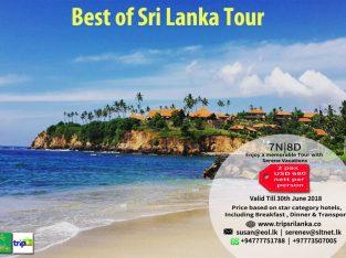 Best of Sri Lanka Tours