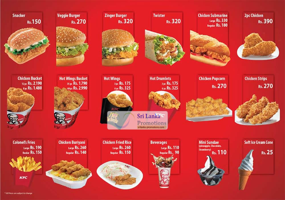 mr rooter menu pricing guide